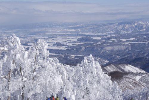 nozawa2011-2.jpg