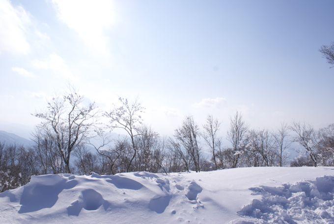 nozawa2012-4.jpg