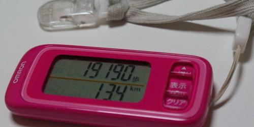 20091123.jpg