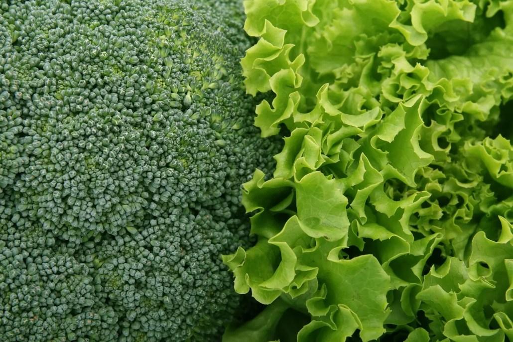 surse vegetale calciu