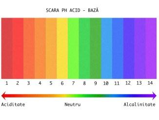 echilibrul acido bazic