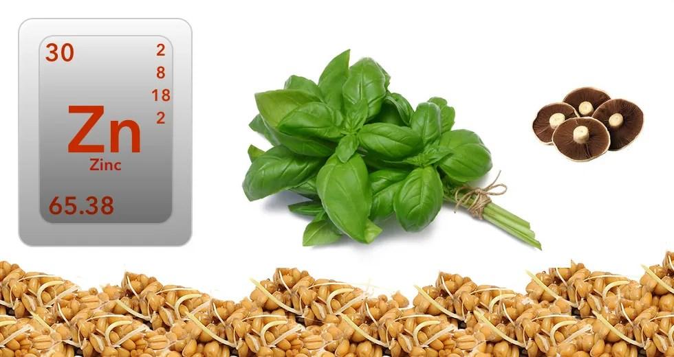 Zincul - beneficii sănătate, deficiență, exces și surse vegetale