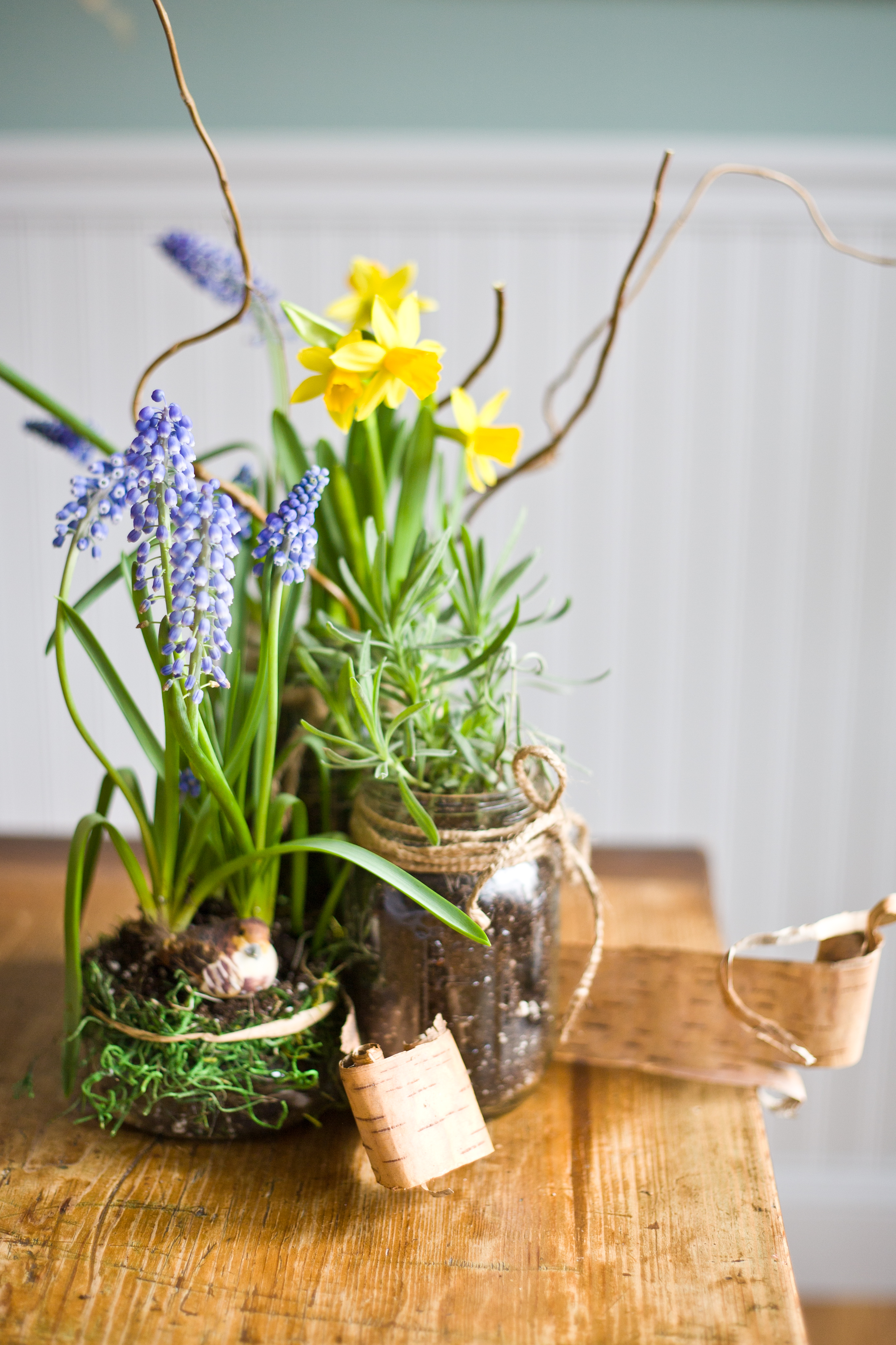 Winter Outside Bringing You Down Indoor Spring Container