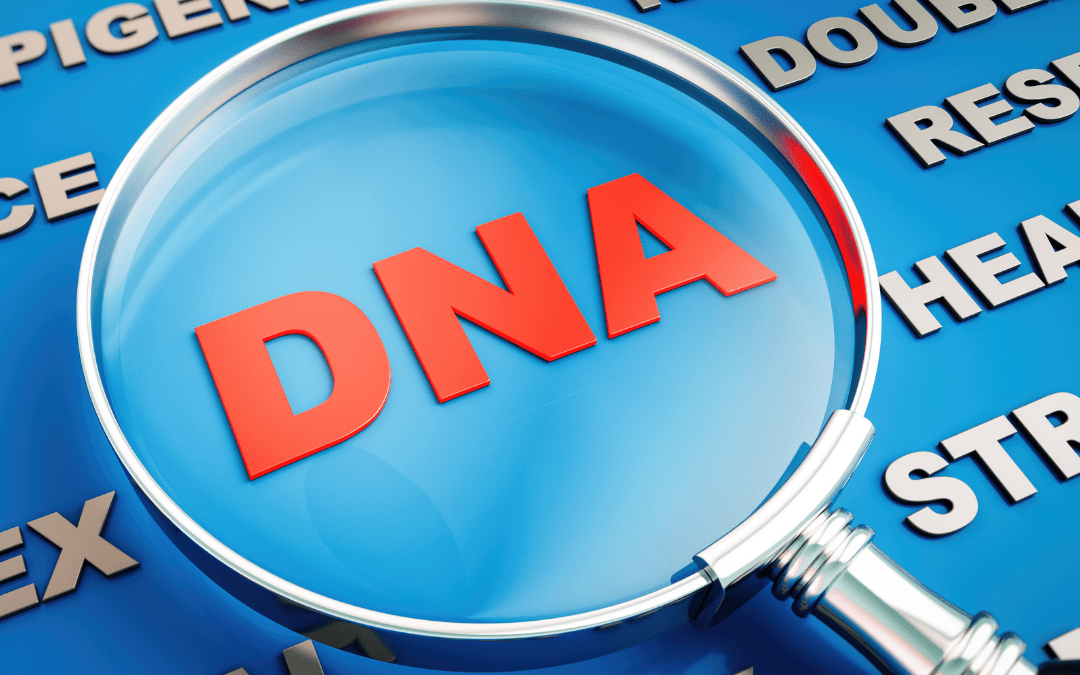 Find Your Birth Parents in the State of California ****Follow These Tips for Ancestry DNA