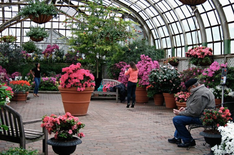 Lookers, Lincoln Park Conservatory, Chicago, © 2013 Celia Her City