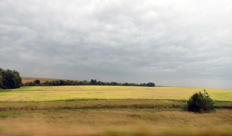 Chartreuse (Iowa bean field), © 2013 Celia Her City