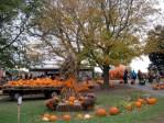 Dinges Farm in Three Oaks, Michigan, around Halloween, © 2013 Celia Her City