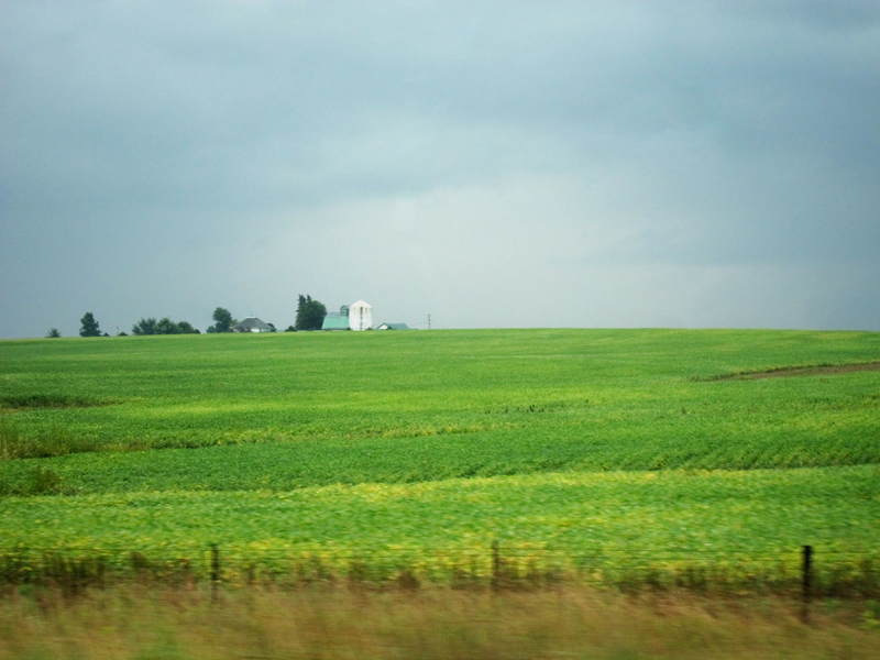 Sea green (Iowa), © 2013 Celia Her City