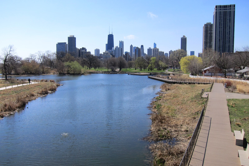 A view of the pond's boardwalk and the Chicago city skyline.