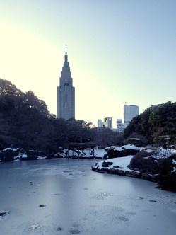 Partially frozen pond!