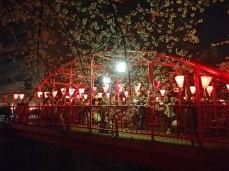 Iconic bridge (featured in many TV dramas)