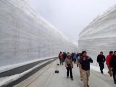 13m high Snow Wall