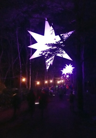 Light sculptures by night