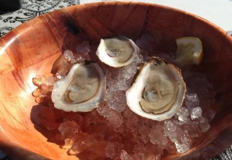 Oysters @ Brooklyn Bridge Smorgasburg