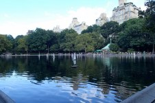 Yachts in the Conservatory Water