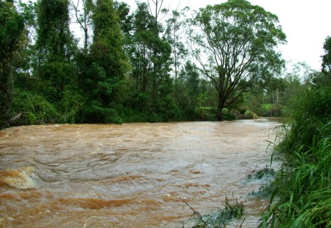 Fast-moving swollen river