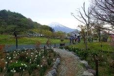Hana no Miyako Park