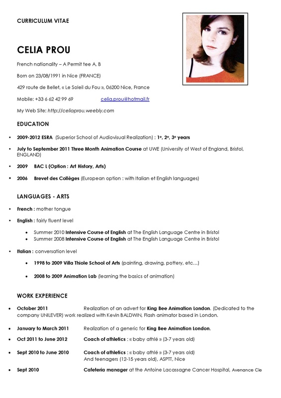 Format Curriculum Vitae International Sample Service Resume