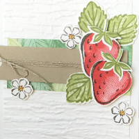 Sweet Strawberry Bundle With a Punch