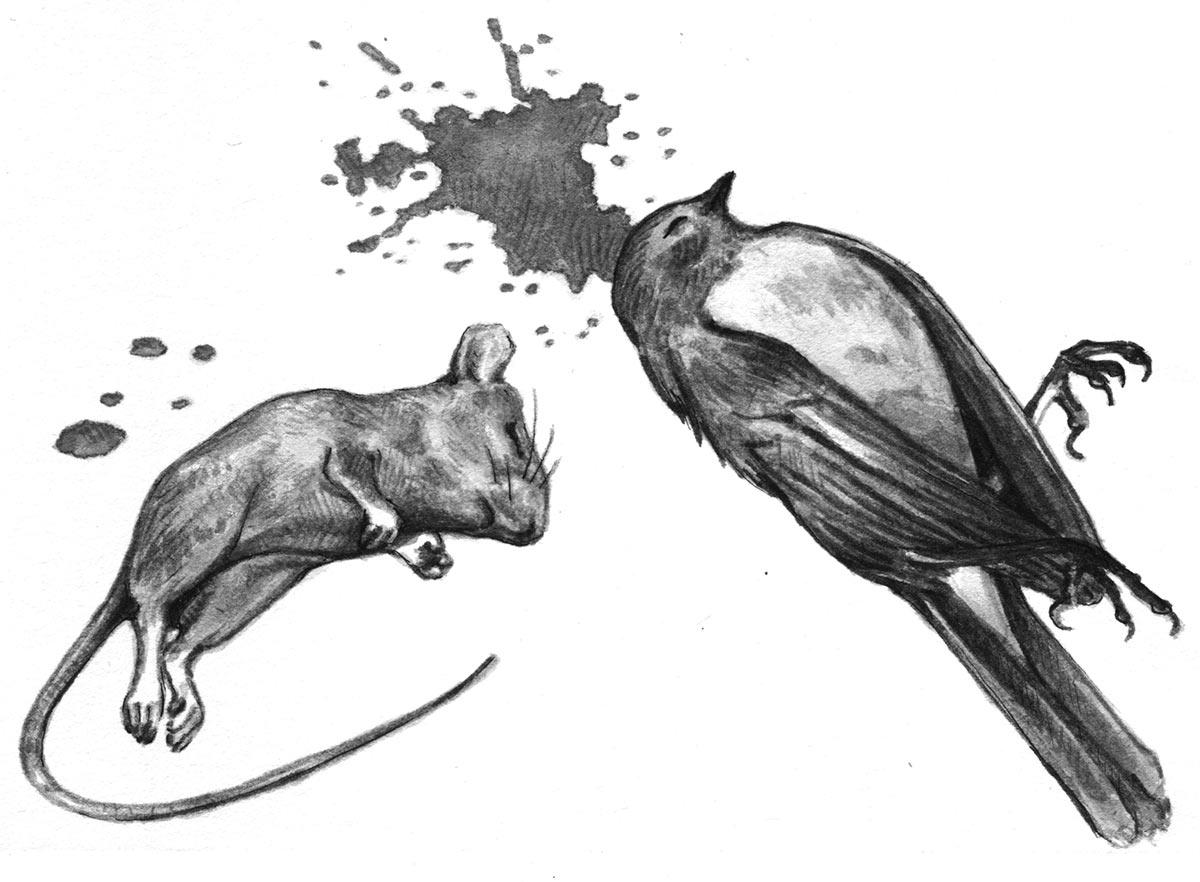 En cours (illustration)