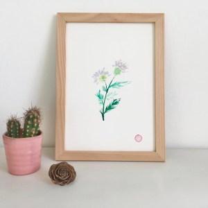 Peinture Aquarelle Fleur Chardon