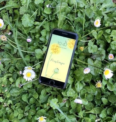 fond d'écran de téléphone pour le printemps, illustration à l'aquarelle d'un pissenlit sur fond dégradé jaune et vert