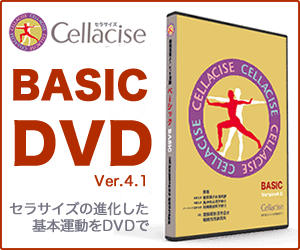 セラサイズ ベーシックDVD Ver 4.1