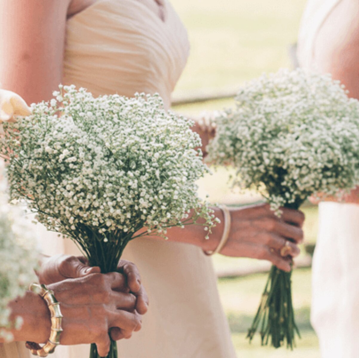 babies breath wedding bouquet prices packages sydney
