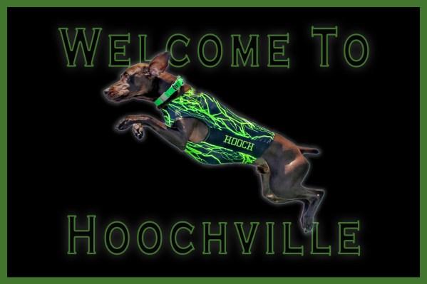 hoochville