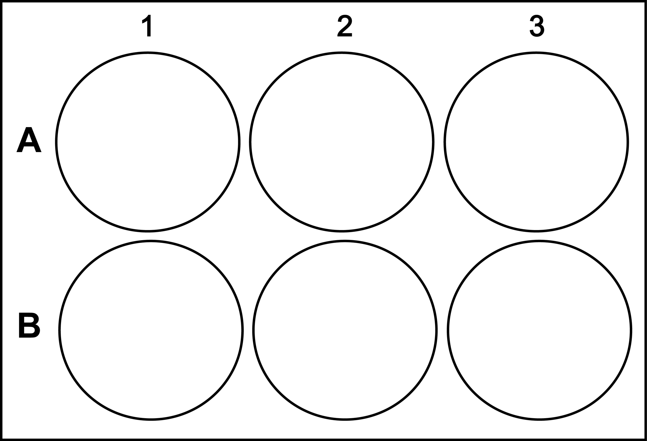 Microtiter plate template