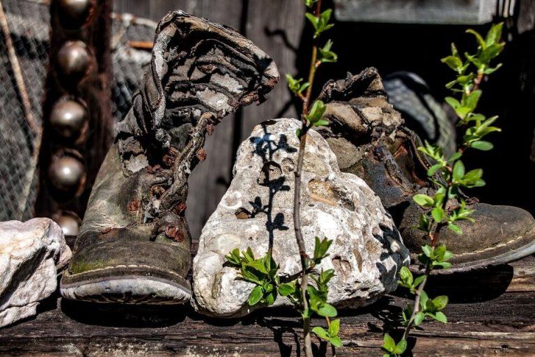 Es un par de zapatos muy viejos y muy gastados y enmedio de estos esta una piedra y unas ramas de una planta