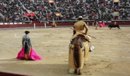 Es una plaza de toros llena de personas viendo torear a un toro