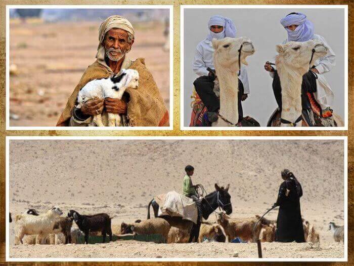 Es un collage de personas que vivenen el desierto los Beduinos