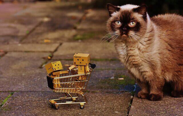 Es un carrito pequeno de compras con un gato enseguida