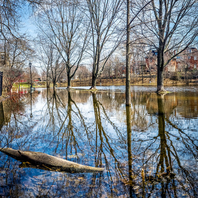 Water in the Park. Nine pictures stitched together. Nikon D7000, ISO 100, f/8.0, 1/320s.