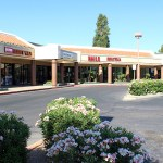 Mesa Shopping Center Investment Opportunity Trades for $1.6 Million