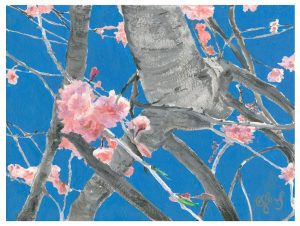 Flora Series I - Cherry Blossom II ©CEMarqua