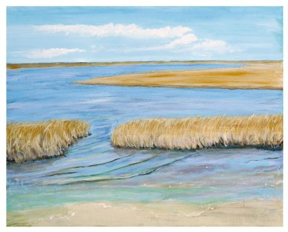 Great Salt Marsh III ©CEMarqua