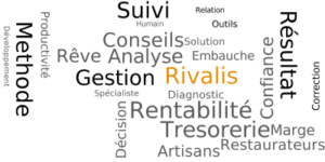 Rivalis - 1er réseau d'accompagnement du dirigeant