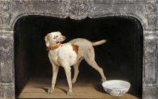 Jean-Baptiste Oudry, krbová zástěna se psem s miskou, 1751