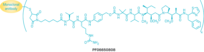 Structure of PF06650808.
