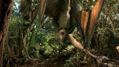Foto de Projeto Dinossauro