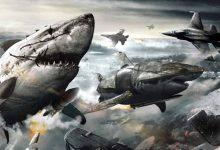 Foto de Tubarões Voadores