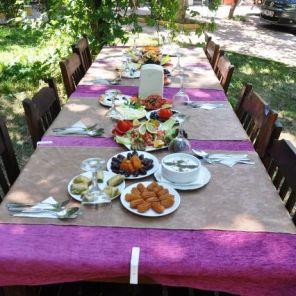 Cennet Vadisi Piknik Dimçayı Alanya (19)