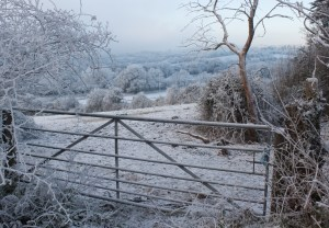 """""""Winter Fence"""" by MEJones is a royalty-free image from stock.xchng"""
