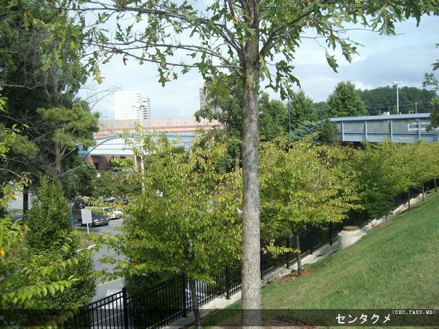 A scenic view outside of the crosswalk at the Cobb Galleria Centre at Anime Weekend Atlanta.