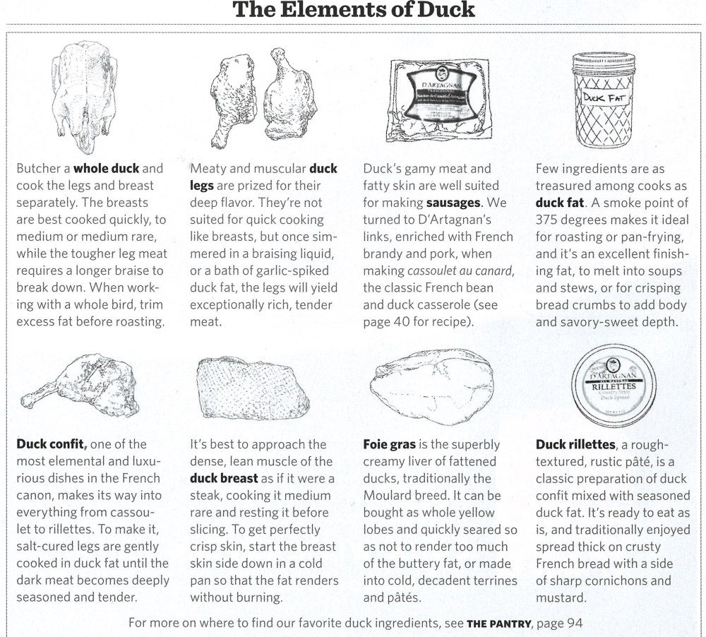 saveur the elements of duck