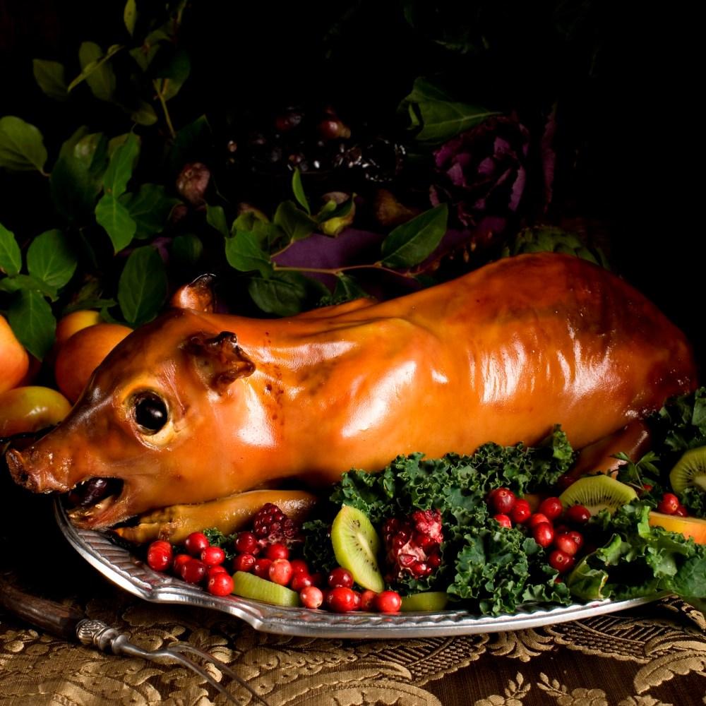 suckling-pig