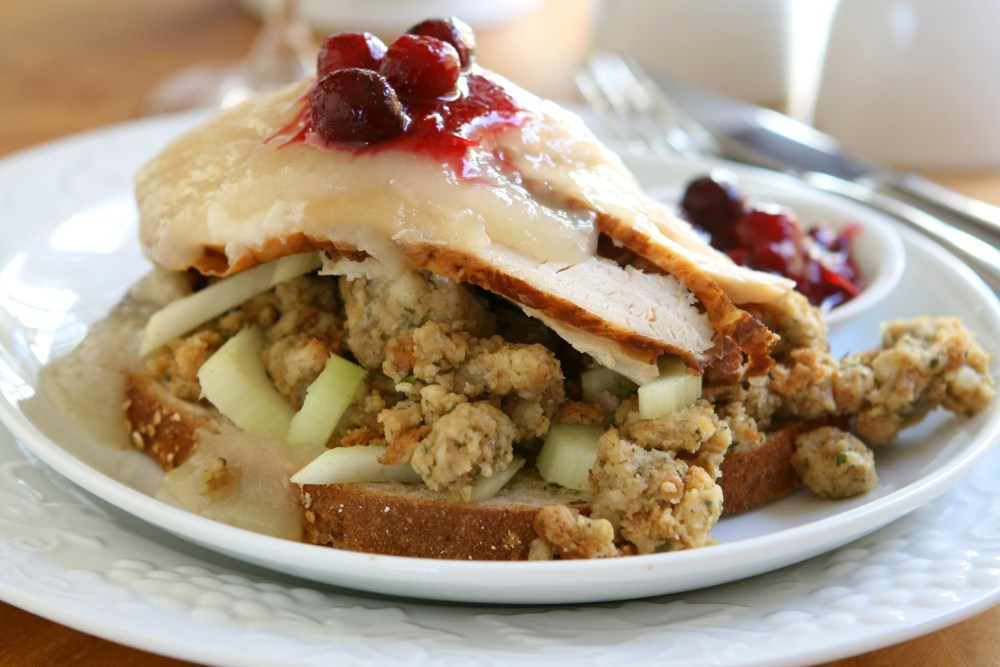 Thanksgiving Leftovers Turkey Sandwich.jpeg