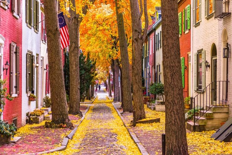 Philadelphia residential street in the fall